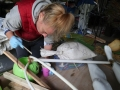 Mel Scamp applies fiberglass and resin